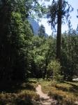 Chilnualna Fall Trail2