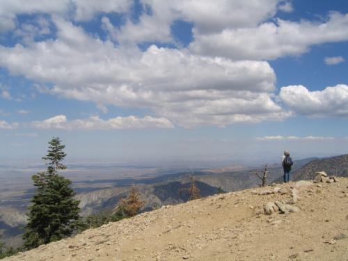 Mt. Williamson3