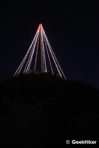 Cerro San Luis tree at night.