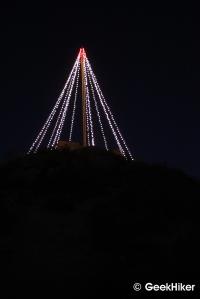 Cerro San Luis tree at night.